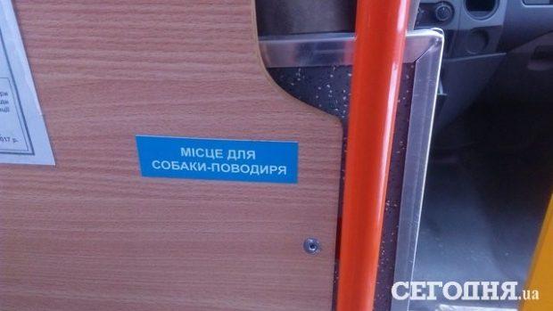 В маршрутках Киева появились места для собак-поводырей
