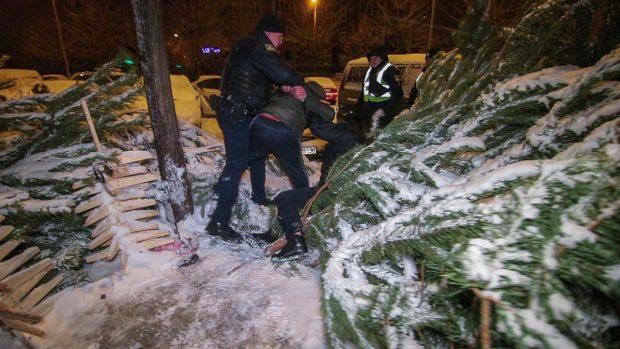 В Киеве попытка украсть елку закончилась дракой на ножах и топорах