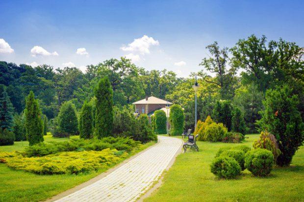 Киевские сады