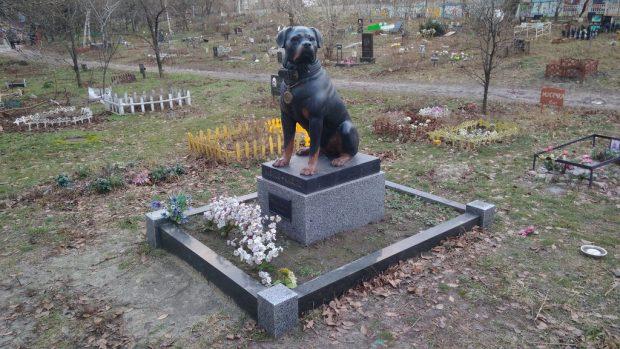Кладбище домашних животных, Киев