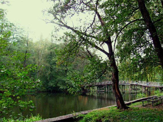 Парк Пуща-Водица, Киев