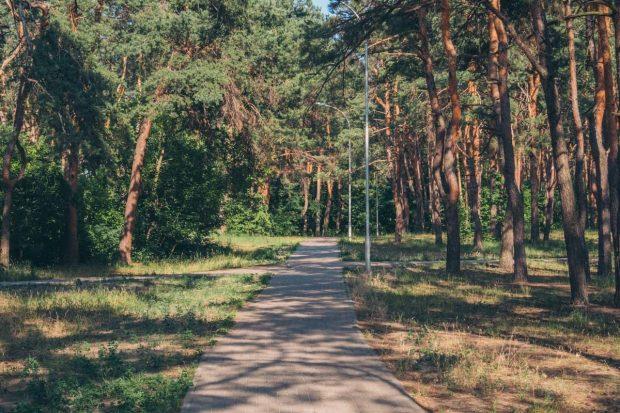 Парк Партизанской Славы