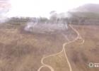 Полиция нашла того, кто устроил пожар в Чернобыльской зоне